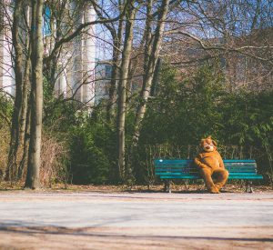 Coping with anxiety in the creative life - a bear suit, alone, on a park bench.